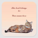 Tabby Cat Bookplate Square Stickers