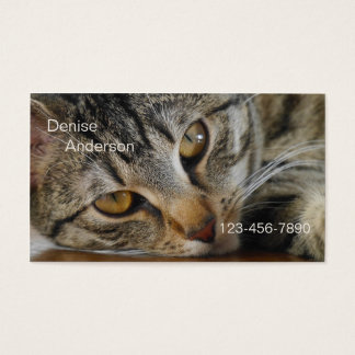 Tabby Cat - Cat Sitter Business Card
