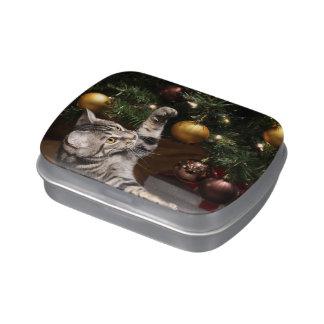 Tabby cat Christmas Jelly Belly Tin
