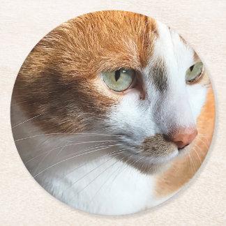 Tabby cat closeup round paper coaster