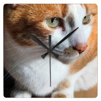 Tabby cat closeup square wall clock