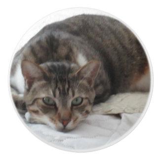 Tabby Cat Custom Ceramic Knob