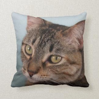 Tabby Cat Custom Throw Pillow