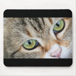 Tabby Cat Eyes Looking At You Mouse Pad