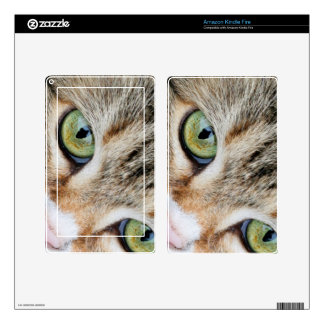 Tabby Cat Eyes Looking At You Skin For Kindle Fire