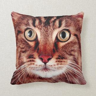 Tabby Cat Face Big Eyes Pillow
