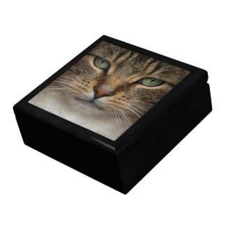 Tabby Cat Face Trinket Box