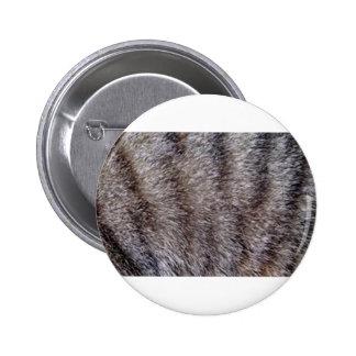 Tabby cat fur jpg pin