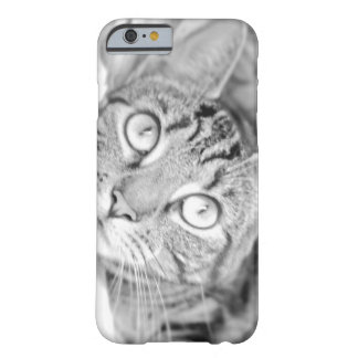 Tabby Cat in Black and White Barely There iPhone 6 Case