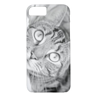 Tabby Cat in Black and White iPhone 8/7 Case