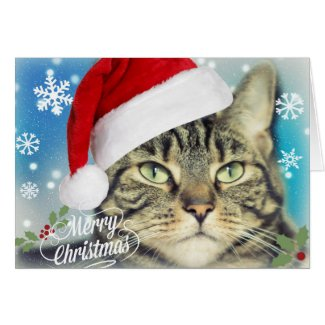 Tabby Cat in Santa Hat Christmas Card