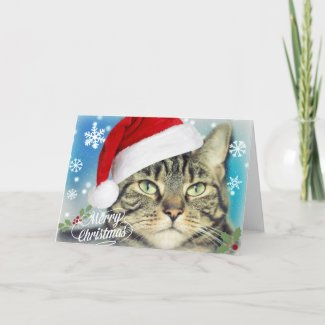 Tabby Cat in Santa Hat Christmas Holiday Card