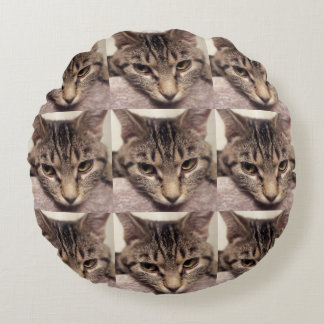 Tabby Cat-Instagram by Shirley Taylor Round Pillow