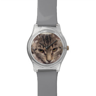 Tabby Cat-Instagram by Shirley Taylor Watch