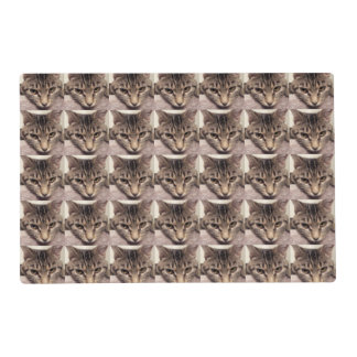 Tabby Cat-Instagram Laminated Place Mat