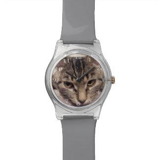 Tabby Cat-Instagram Watch
