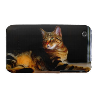Tabby Cat iPhone 3 Case