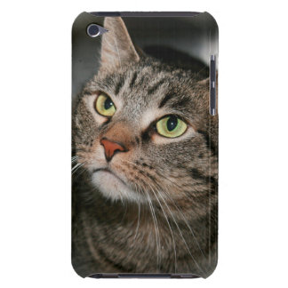 TABBY CAT IPOD TOUCH iPod TOUCH CASE