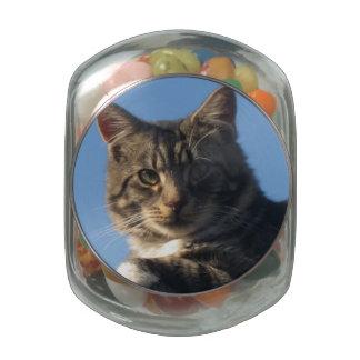 Tabby Cat - Jelly Belly Glass Jar