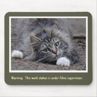Tabby Cat Keeping Watch Mouse Pad