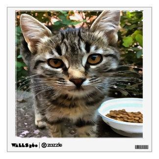 Tabby Cat Kitten Making Eye Contact Wall Decal