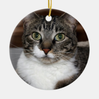 Tabby Cat Looking at You Ceramic Ornament