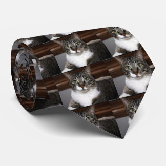 Tabby Cat Looking at You Neck Tie