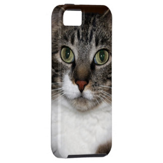 Tabby Cat Looking at You Photo iPhone SE/5/5s Case