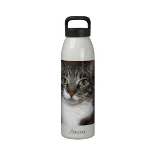 Tabby Cat Looking at You Drinking Bottle