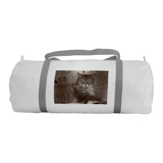 Tabby Cat Lounging Outside, Grunge Gym Bag