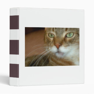 Tabby Cat Love Binders