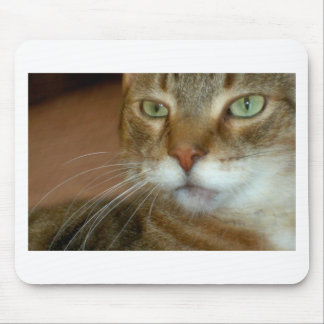 Tabby Cat Love Mouse Pad