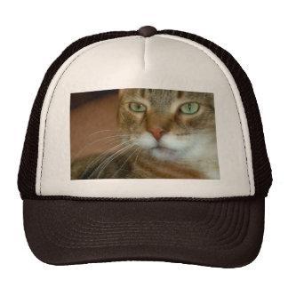 Tabby Cat Love Trucker Hat