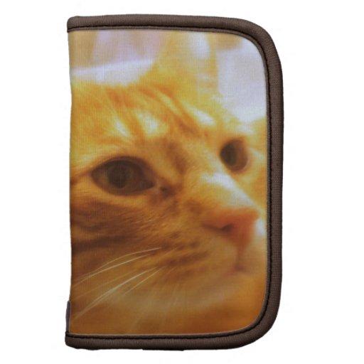 Tabby Cat Lovers Folio Planner