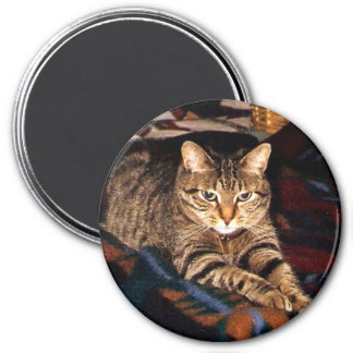 """Tabby Cat Magnet  """"lounging around"""""""