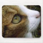 Tabby Cat Mousepad