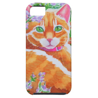 Tabby Cat on Garden Path iPhone SE/5/5s Case