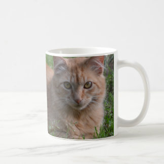 Tabby cat orange coffee mug