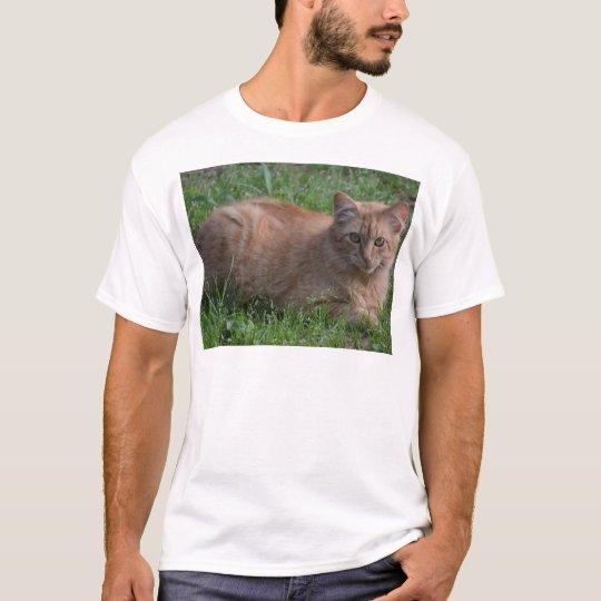Tabby cat orange T-Shirt