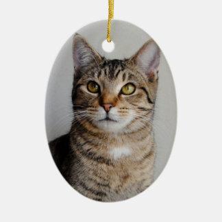 Tabby Cat Ornament