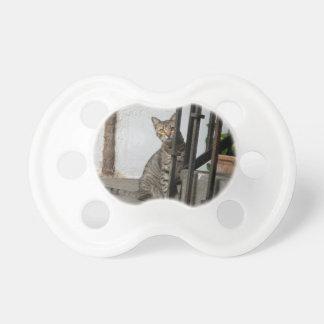 Tabby Cat Pacifier