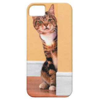 Tabby cat peeking around wall iPhone SE/5/5s case