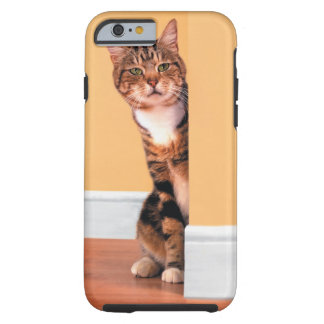 Tabby cat peeking around wall tough iPhone 6 case