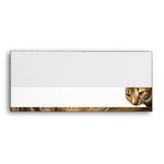 Tabby Cat Peeking from the Top Right Corner Envelope