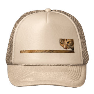 Tabby Cat Peeking from the Top Right Corner Trucker Hats