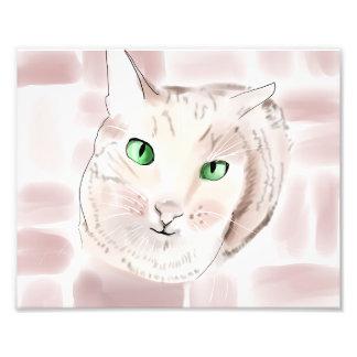 Tabby Cat Photo Print