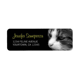 Tabby Cat Photograph Label