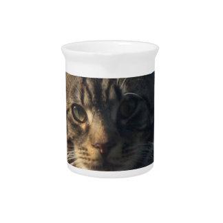Tabby Cat Pitcher