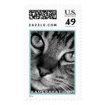 Tabby Cat Postage
