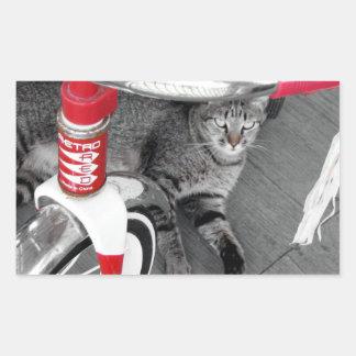 Tabby Cat Rectangular Sticker